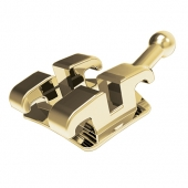 ATLAS MINI BRIGHT GOLD BRACKET SYSTEM